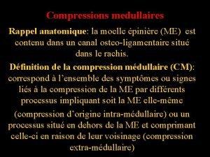 Compressions medullaires Rappel anatomique la moelle pinire ME