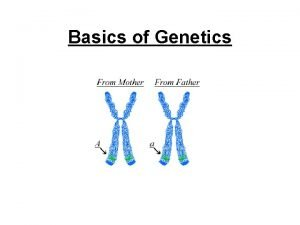 Basics of Genetics Historical Genetics Gregor Mendel 18221884