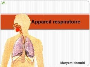 Appareil respiratoire Maryem khemiri Plan Dfinition Anatomie respiratoire