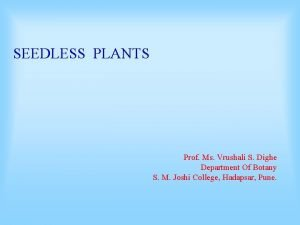 SEEDLESS PLANTS Prof Ms Vrushali S Dighe Department