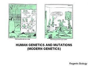 HUMAN GENETICS AND MUTATIONS MODERN GENETICS Regents Biology