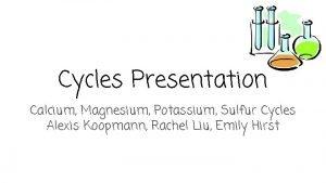 Cycles Presentation Calcium Magnesium Potassium Sulfur Cycles Alexis