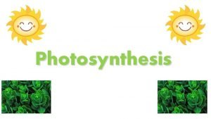 Photosynthesis Lesson Starter in your jotter Write down