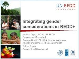 Integrating gender considerations in REDD Ms Lisa Ogle
