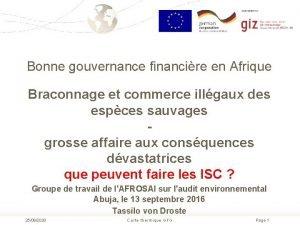 Bonne gouvernance financire en Afrique Braconnage et commerce