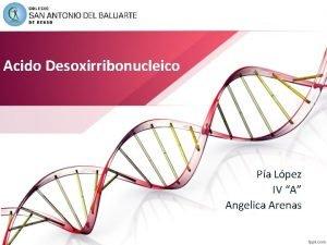 Acido Desoxirribonucleico Pa Lpez IV A Angelica Arenas