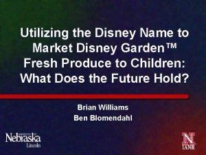 Utilizing the Disney Name to Market Disney Garden
