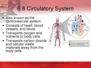 6 8 Circulatory System Also known as the