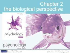 Chapter 2 the biological perspective psychology fourth edition