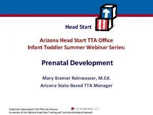 Head Start Arizona Head Start TTA Office Infant