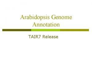 Arabidopsis Genome Annotation TAIR 7 Release Arabidopsis Genome