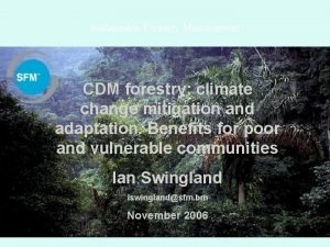 Sustainable Forestry Management CDM forestry climate change mitigation