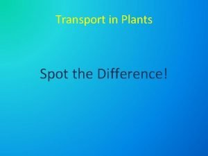 Transport in Plants Spot the Difference Transport in