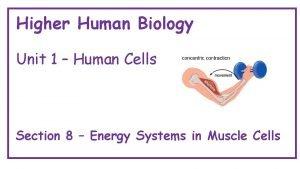 Higher Human Biology Unit 1 Human Cells Section
