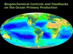 Biogeochemical Controls and Feedbacks on the Ocean Primary