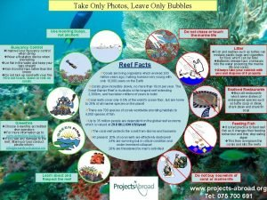 Take Only Photos Leave Only Bubbles Use mooring