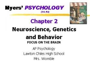 FOCUS ON THE BRAIN The Brain z Brainstem