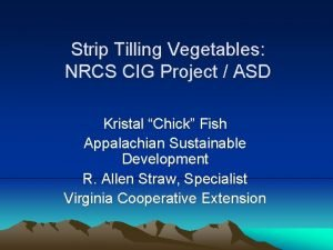 Strip Tilling Vegetables NRCS CIG Project ASD Kristal