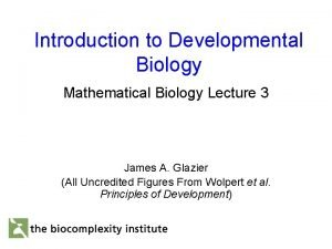 Introduction to Developmental Biology Mathematical Biology Lecture 3