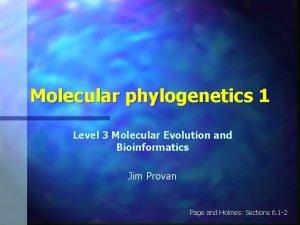 Molecular phylogenetics 1 Level 3 Molecular Evolution and