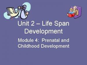 Unit 2 Life Span Development Module 4 Prenatal