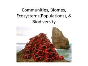 Communities Biomes EcosystemsPopulations Biodiversity Weather vs Climate Weather