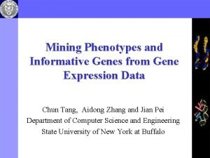 Mining Phenotypes and Informative Genes from Gene Expression