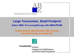 Large Taxonomies Small Footprint Native XBRL ProcessingStorage with