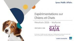 Exprimentations sur Chiens et Chats Rsultats 2016 Wallonie