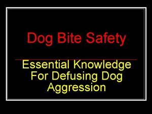 Dog Bite Safety Essential Knowledge For Defusing Dog