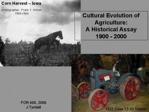 Corn Harvest Iowa Photographer Frank T Wilson 1903