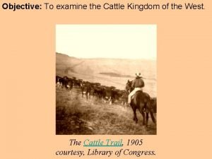 Objective To examine the Cattle Kingdom of the