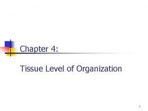 Chapter 4 Tissue Level of Organization 1 Tissue