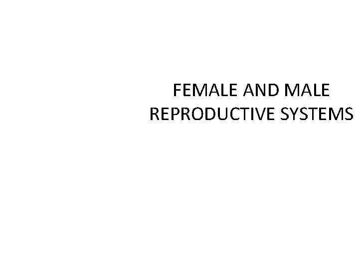 FEMALE AND MALE REPRODUCTIVE SYSTEMS MALE GENITAL ORGANS