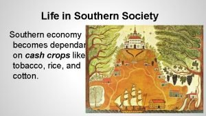 Life in Southern Society Southern economy becomes dependant