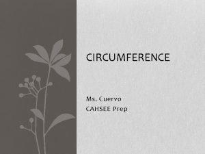 CIRCUMFERENCE Ms Cuervo CAHSEE Prep Circumference 7 MG