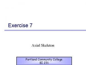 Exercise 7 Axial Skeleton Portland Community College BI