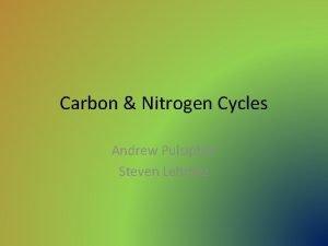 Carbon Nitrogen Cycles Andrew Pulsipher Steven Lehmitz Carbon