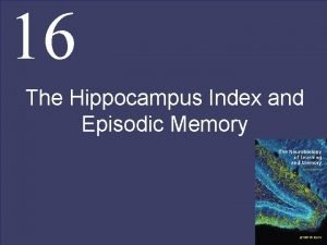 16 The Hippocampus Index and Episodic Memory The