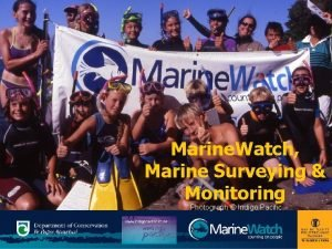 Marine Watch Marine Surveying Monitoring Photograph Indigo Pacific