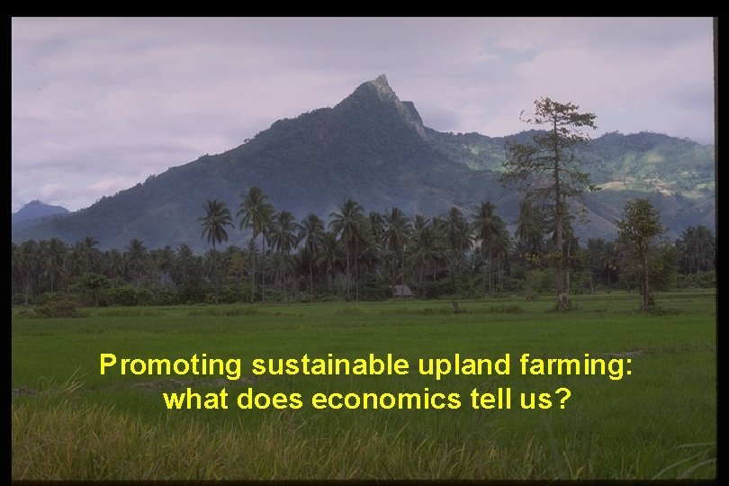 Promoting sustainable upland farming what does economics tell