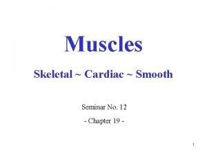 Muscles Skeletal Cardiac Smooth Seminar No 12 Chapter