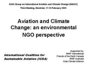 ICAO Group on International Aviation and Climate Change