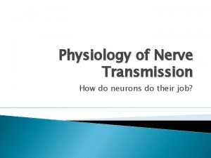 Physiology of Nerve Transmission How do neurons do