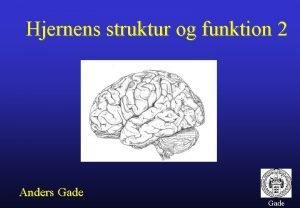 Hjernens struktur og funktion 2 Anders Gade Hjernens