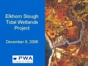 Elkhorn Slough Tidal Wetlands Project December 8 2006
