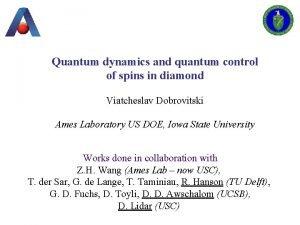 Quantum dynamics and quantum control of spins in