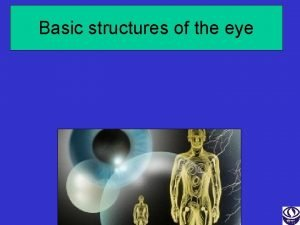 Basic structures of the eye Learning Objectives Basic