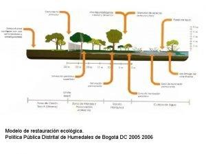 Modelo de restauracin ecolgica Poltica Pblica Distrital de
