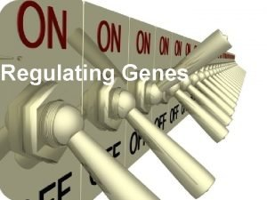 Regulating Genes Only a fraction of genes in